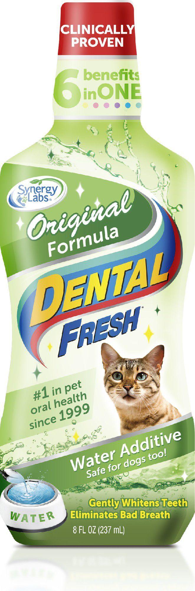 Synergy Labs Dental Fresh Specjalna Formuła dla Kota 237 ml 1