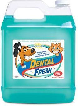 Synergy Labs Dental Fresh standard ustnej 3,8l 1