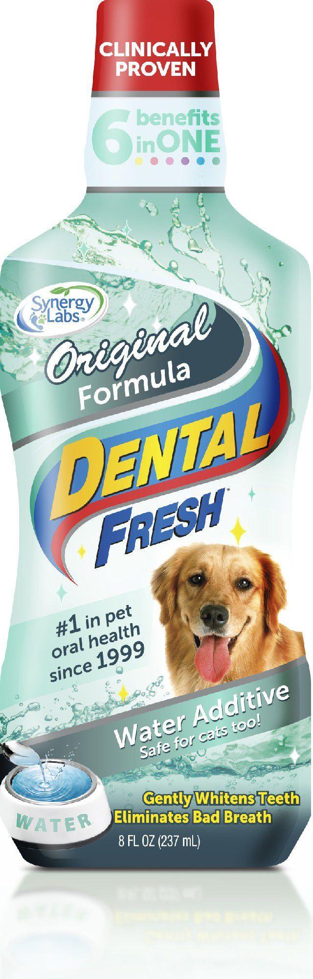 Synergy Labs Dental Fresh standard 237ml 1