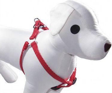 Dino Szelki taśma regulowane dla psa 10mm/30-50cm Niebieski - 5906040059303 1