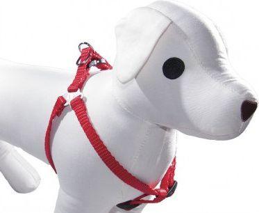 Dino Szelki taśma regulowane dla psa 15mm/40-50cm - 5908279711786 1