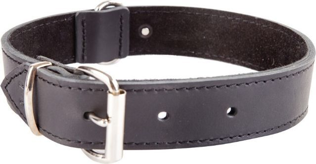 Dingo obroża ze skóry natłuszczanej, podszyta miękką skórą, okucia chrom, szer. 16 mm x 35 cm (23-27 cm) czarny 1