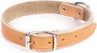 Dingo obroża skórzana podszyta filcem szer. 2,0 cm dł. 50 cm natural 1