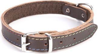 Dingo obroża skórzana podszyta filcem szer. 1,0 cm dł. 33 cm brąz 1