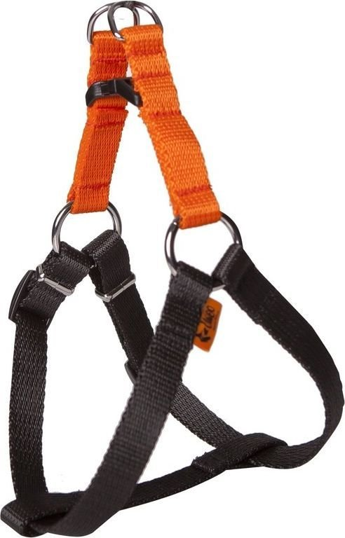 Dingo Fred Energy rozmiar 50 szer. 1.6 cm Pomarańczowe (94612) 1