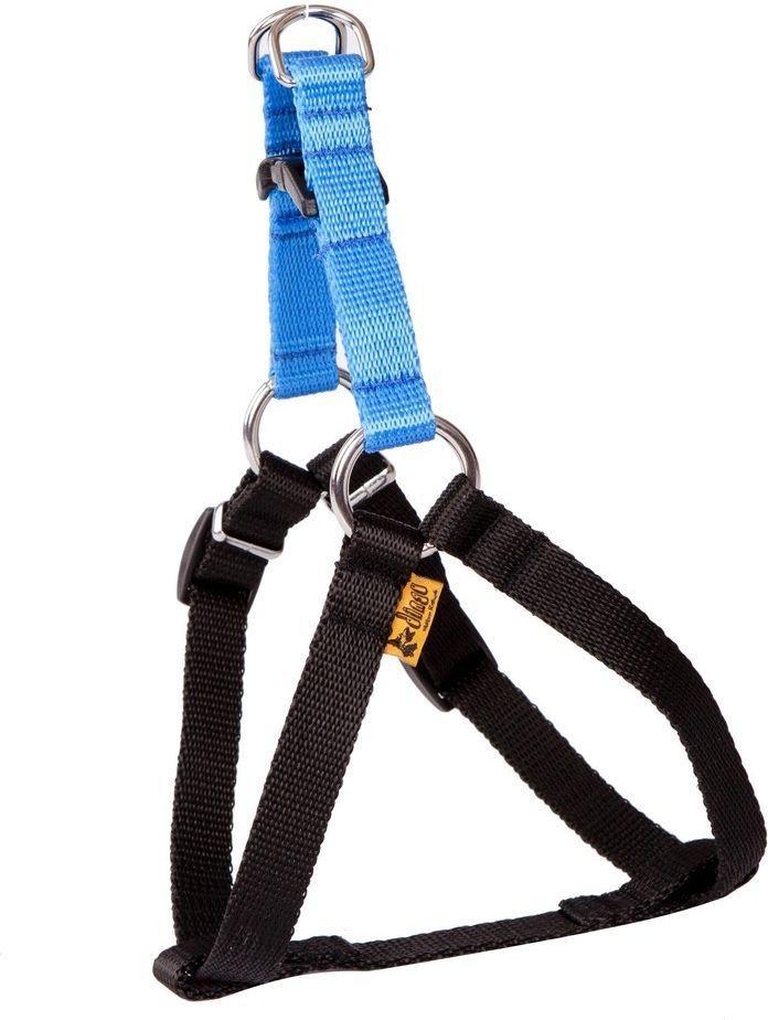 Dingo Fred Energy rozmiar 50 szer. 1.6 cm Niebieskie (94630) 1