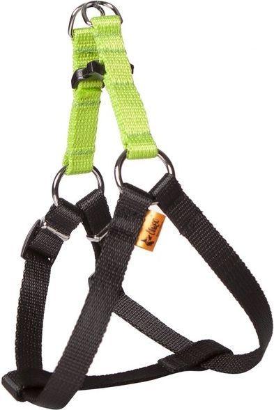 Dingo Fred Energy rozmiar 60 szer. 1.6 cm Zielone (94614) 1