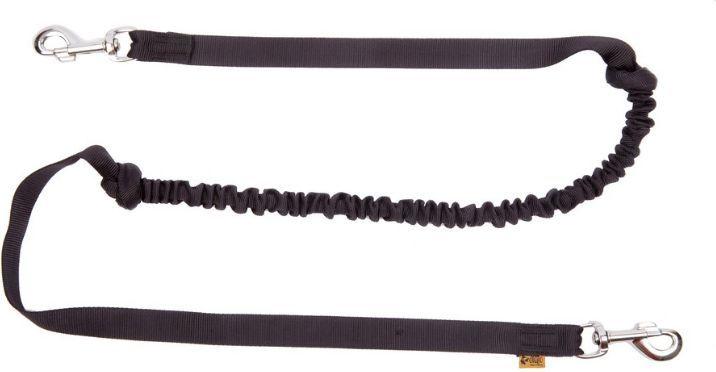 Dingo smycz z taśmy z amortyzatorem i 2 karabinkami dł. 170 cm - 14699 1