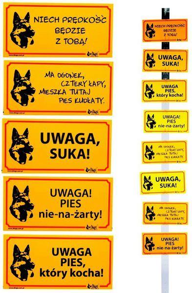 """Dingo Tabliczka ostrzegawcza PCV - """"Ma ogonek, cztery łapy, mieszka tutaj pies kudłaty"""" 1"""