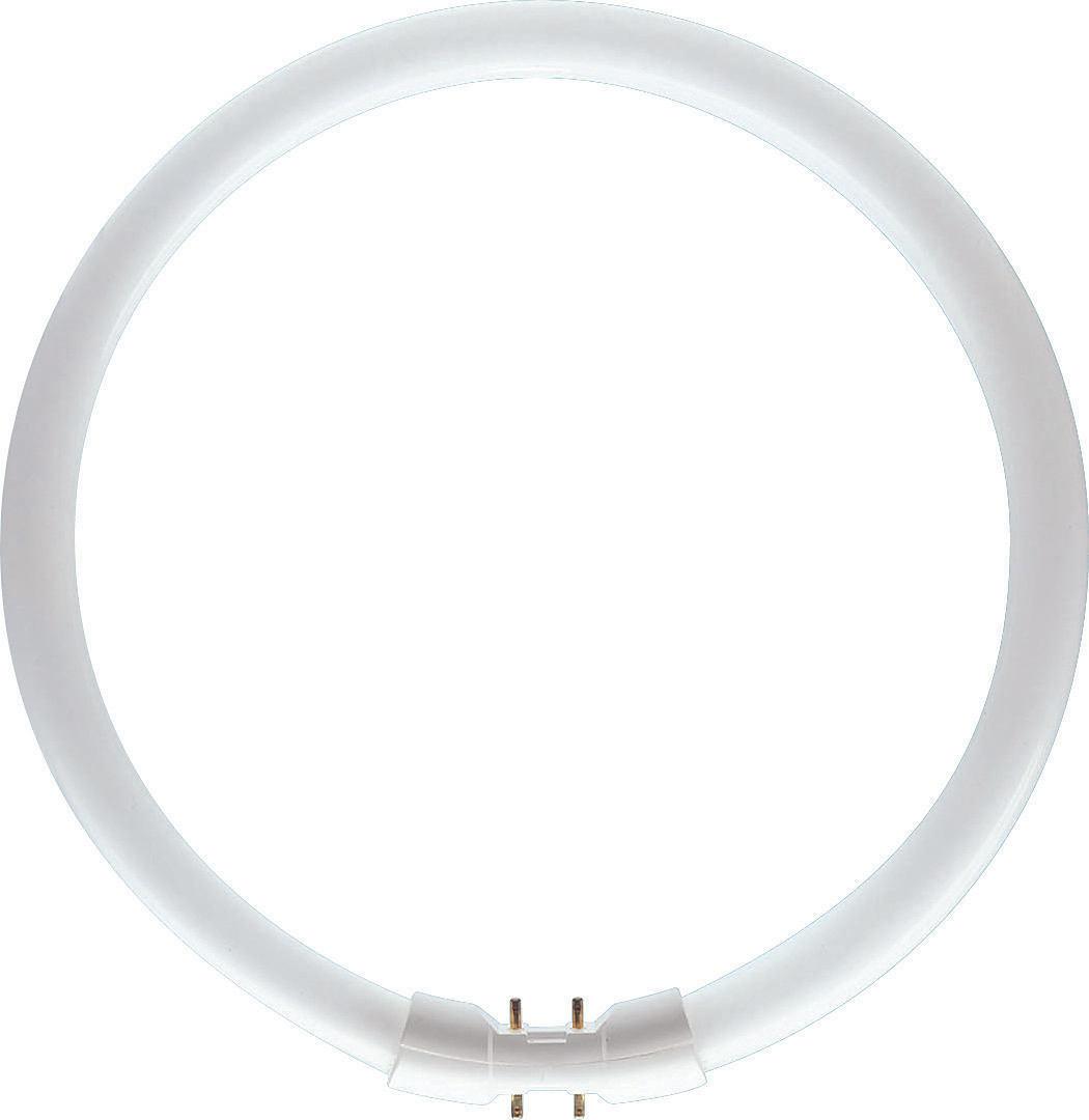 Świetlówka Philips kołowa 2GX13 40W 3300lm 3000K (871150064097025) 1