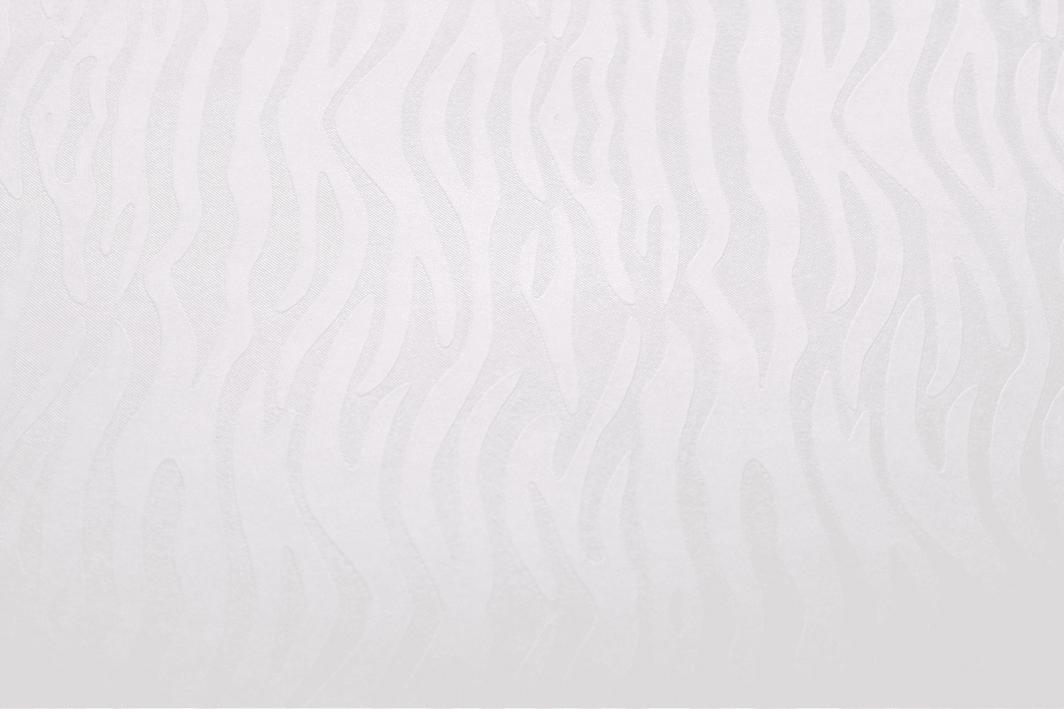 Argo Papier Karton Ozdobny A4 Pacific Biały 20k 1
