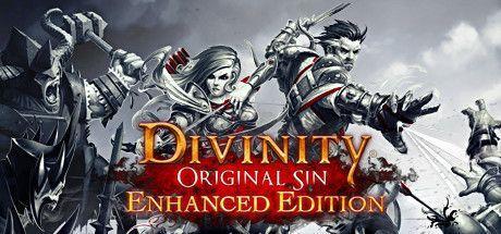 Divinity: Original Sin Enhanced Edition PC, wersja cyfrowa 1