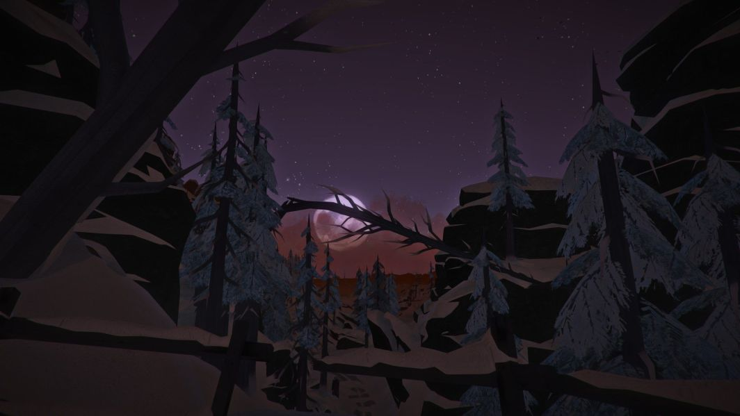 The Long Dark Steam Gift 1