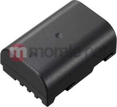 Akumulator Panasonic DMW-BLF19E 1