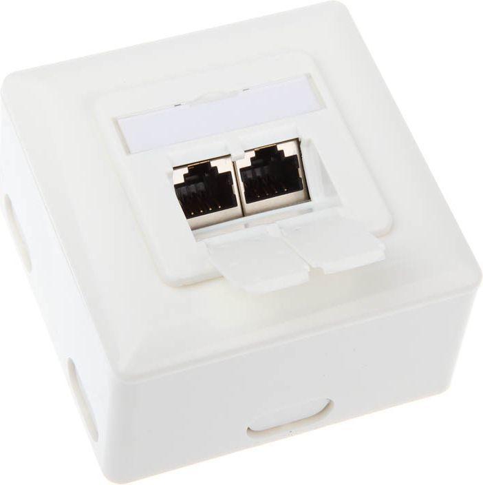 InLine Gniazdo natynkowe sieciowe 2x RJ45 Cat.6 - białe poziome (75602J) 1