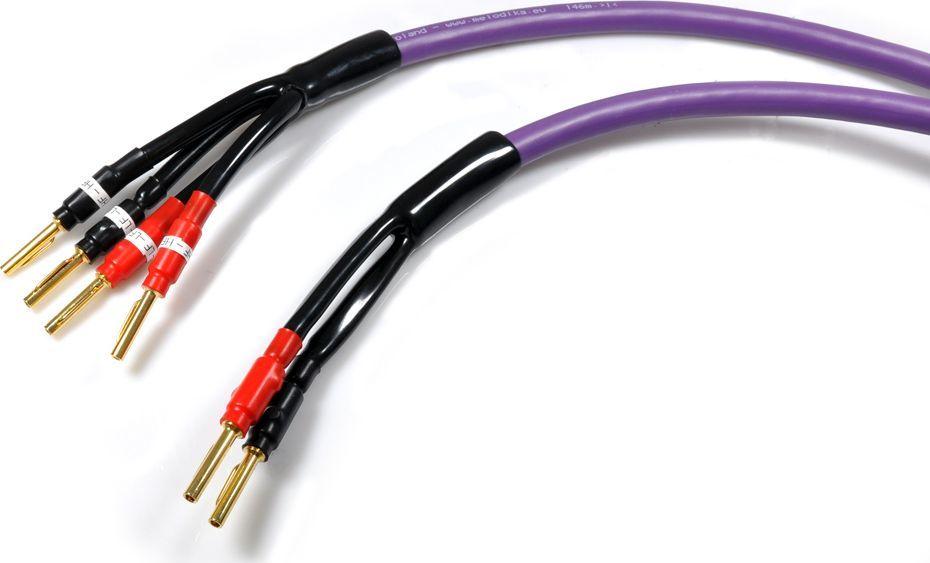 Kabel Melodika Banan x2 - Banan x4 3m fioletowy 1