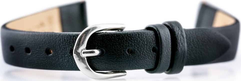 Bisset Pasek skórzany do zegarka BISSET BS-201 - 12mm uniwersalny 1