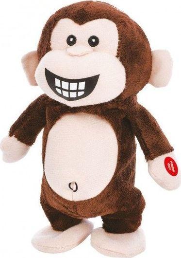 TY Powtarzająca Małpa brązowa 1