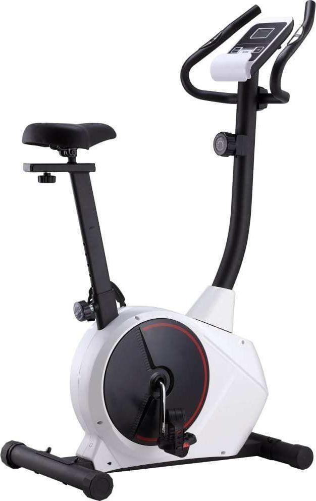vidaXL Rower treningowy magnetyczny 91907 1