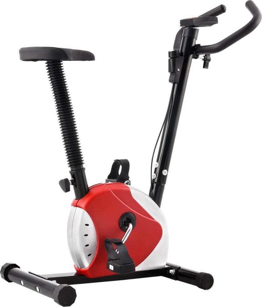 vidaXL Rower treningowy magnetyczny 92008 1