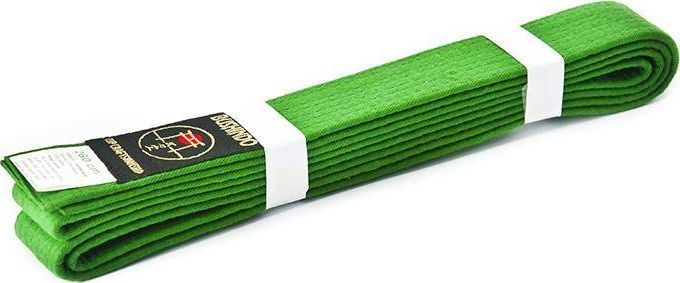 Bushido PAS DO KIMON BUSHINDO 240cm zielony 1