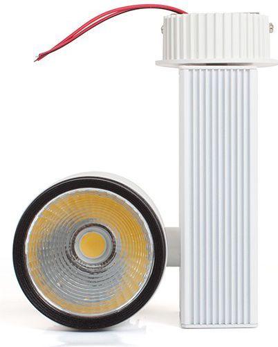 Naświetlacz Abilite Reflektor kierunkowy 1LED, 1600lm kąt św. 15° 230V/20W (5901583546617) 1