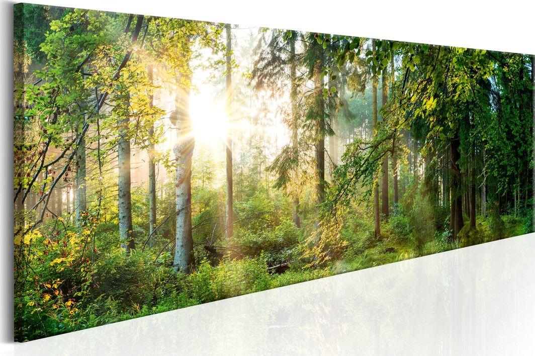 Artgeist Obraz - Leśne schronienie ARTGEIST 1