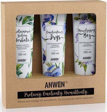 Anwen Anwen - Zestaw Wegański 3 Odżywek do porowatości średniej - 3x 300 ml uniwersalny 1