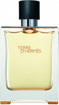 HERMES Terre D Hermes EDT 100ml 1