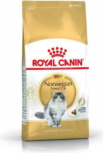 Royal Canin Norwegian Adult 10 kg 1