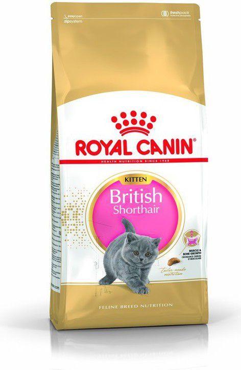 Royal Canin British Shorthair Kitten karma sucha dla kociąt, do 12 miesiąca, rasy brytyjski krótkowłosy 10kg 1