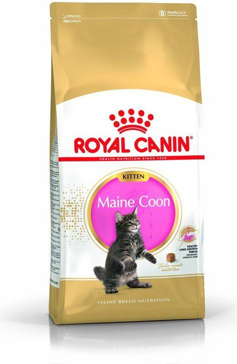 Royal Canin Maine Coon Kitten karma sucha dla kociąt, do 15 miesiąca, rasy maine coon 4kg 1