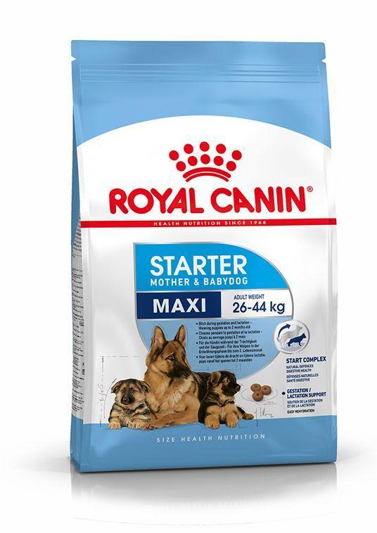 Royal Canin SHN Maxi Starter M&B 15 kg 1