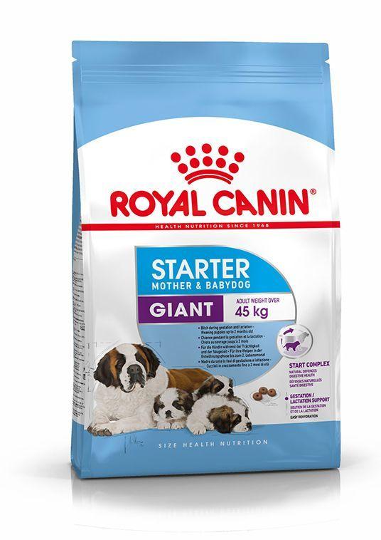 Royal Canin SHN Giant Starter M & B 15kg 1