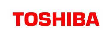 Toshiba Toner Bag (6AG00000060) 1