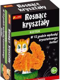 Ranok Krysztalowy kotek