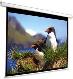 Ekran projekcyjny Optika 200x117 MG E200117MG