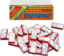 Domino.Gra towarzysk