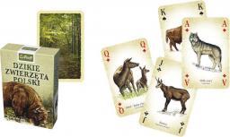 Trefl Karty - Przyroda - Dzikie zwierzęta Polski (188094)