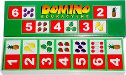 Duże Domino Edukacyjne