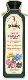 Babuszka Agafia Delikatny balsam do włosów farbowanych 350ml