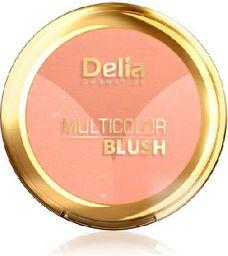 Delia Delia Cosmetics Multicolor Blush Róż do policzków wielokolorowy nr 02  8g - 719295