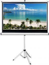Ekran projekcyjny Aveli XRT-00087 221x125cm 16:9