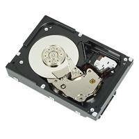 Dysk serwerowy Dell HD,2T,NL6,7.2K,3.5,S-MSK,E/C - R755K