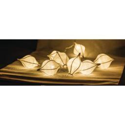 Lampki choinkowe HQ LED biały ciepły 10szt. (HQLEDSLWTRDRW)