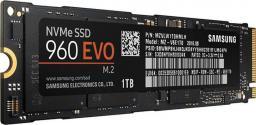 Dysk SSD Samsung 960 Evo 1TB M.2 PCIe (MZ-V6E1T0BW)