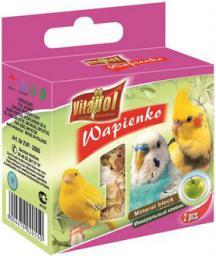 Vitapol Kostka wapienna jabłkowa dla ptaków Vitapol 35g