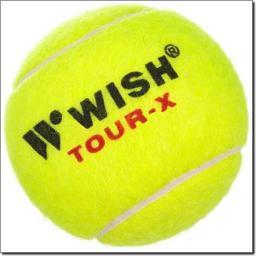 WISH X-830 Tour Piłki Do Tenisa Ziemnego (15-1-041)