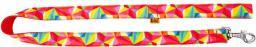 Dingo smycz pojedyncza America-Kolorado 2.5 x 110 cm
