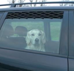 Trixie Kratka do samochodu mała czarna